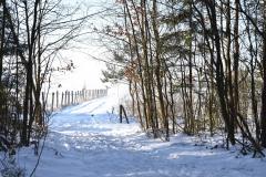 DSC_3421 (www.fotoss.pl)