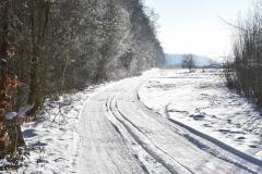DSC_3422 (www.fotoss.pl)