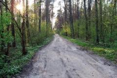 DSCF9628 (www.fotoss.pl)
